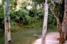 Río Segura camino del Balneario de Archena